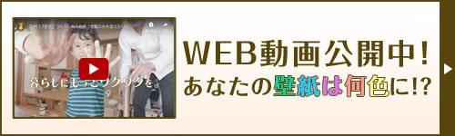 WEB動画公開中