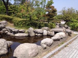 白水大池公園10