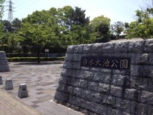 白水大池公園2