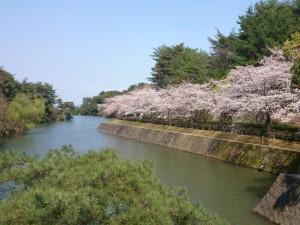 白水大池公園5