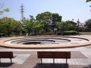 白水大池公園11