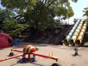 白水大池公園12