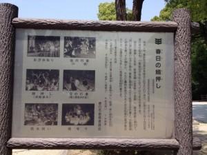 春日神社 8
