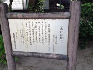 春日神社 6