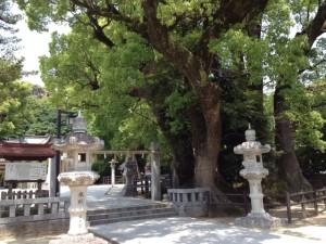 春日神社 3
