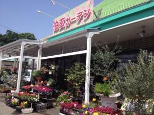 伯玄ガーデン1