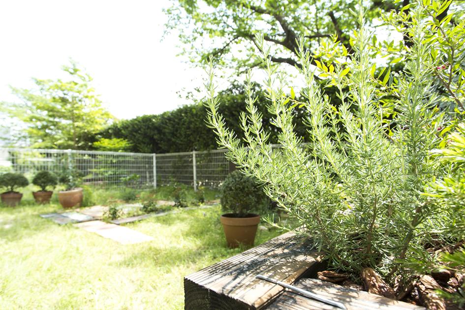 四季を感じる庭で走り回れる家