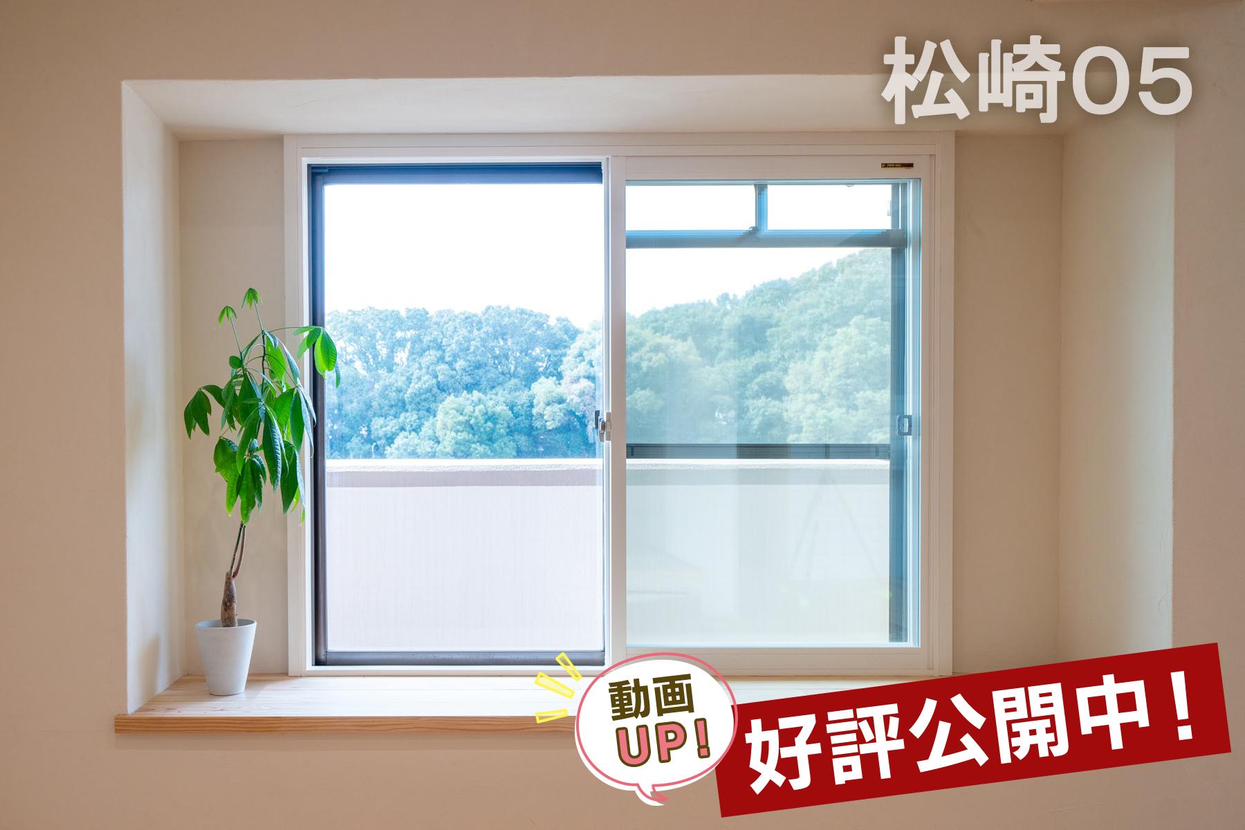 窓辺でひなたぼっこを楽しむ家